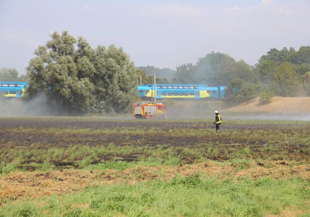 Die Flammen drohten sich in Richtung Gleisanlaen auszudehnen. Fotos: Rudolf Karliczek