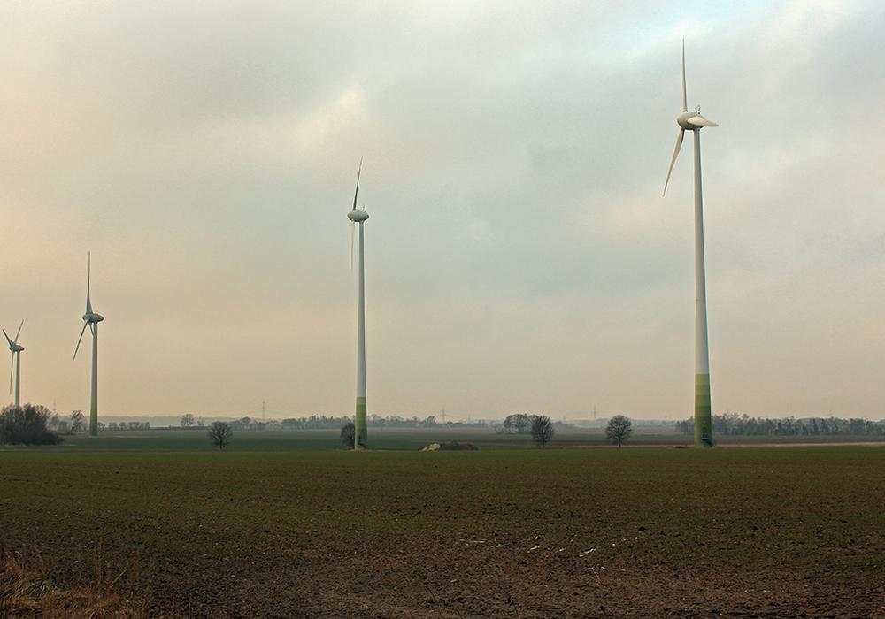 Die Grünen fordern, dass die Gemeinde Cremlingen auf umweltfreundlichen Strom - zum Beispiel durch Windräder produziert - umsteigt. Foto: Archiv/Magdalena Sydow