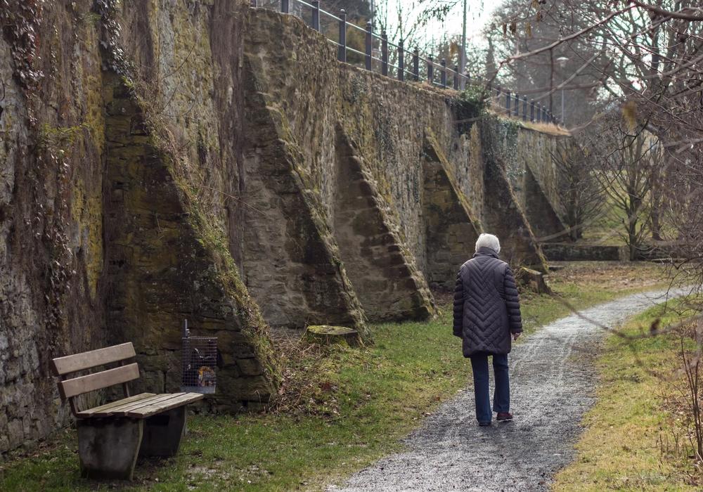 Im Kontext des Wallanlagen-Umbaus: Die CDU fordert Befestigung von Flächen und Wegen. Symbolfoto: Alec Pein/Archiv
