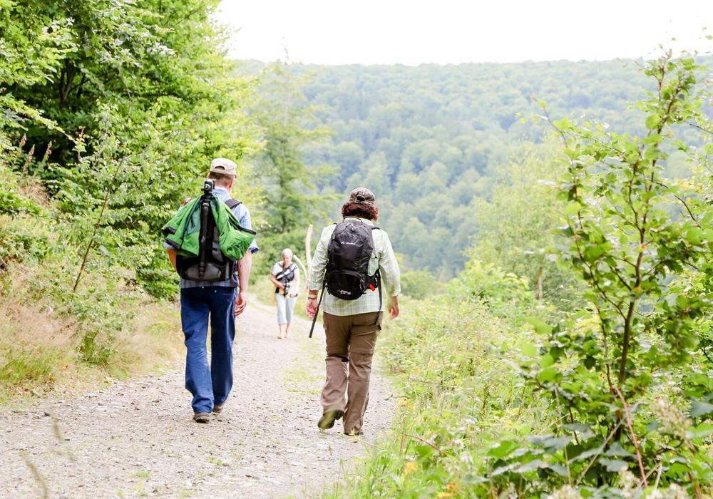 Wandern entspannt. Foto:    Kur- Tourismus-   und Wirtschaftsbetriebe  der Stadt Bad Harzburg GmbH