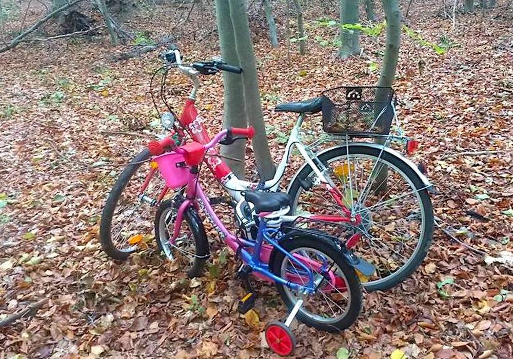Die Fahrräder stehen seit einem Monat unverändert an der selben Stelle im Lechlumer Holz. Foto: Privat