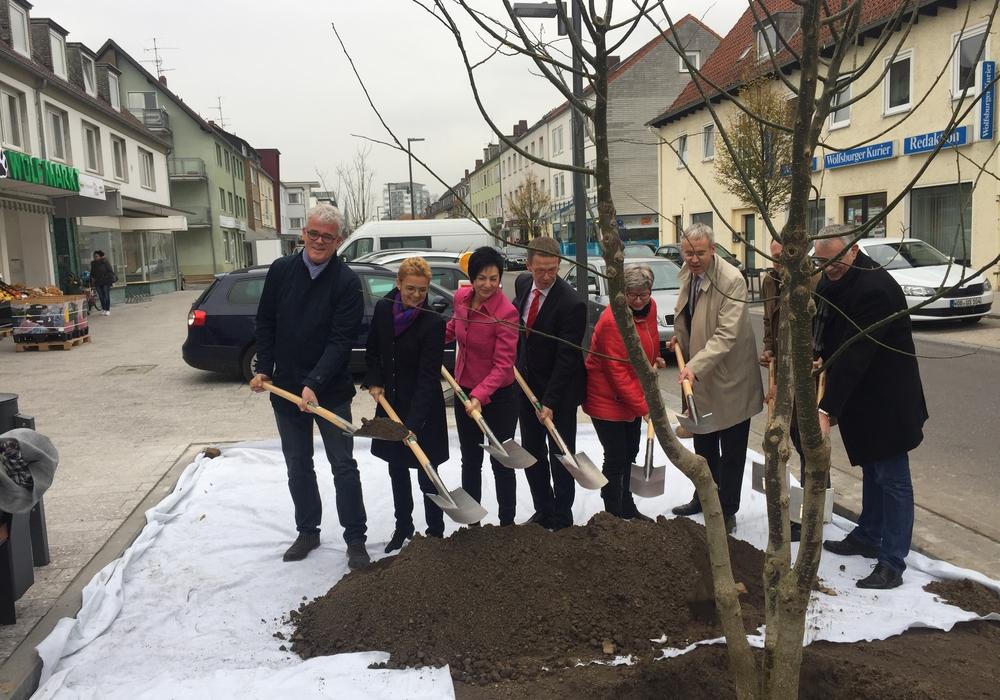 Oberbürgermeister und Stadtrat pflanzten einen Baum als Vollendung des Umbaus der Poststraße. Foto: Stadt Helmstedt