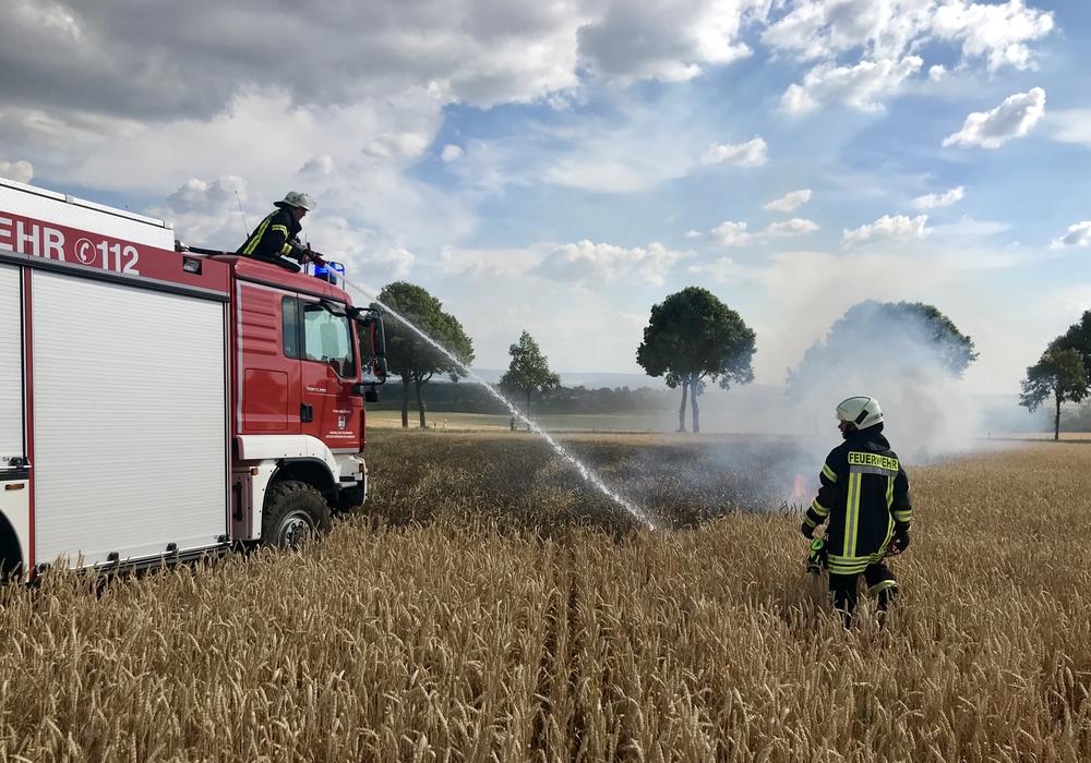 Die Feuerwehr hatte die Lage schnell im Griff. Fotos: FF Heiligendorf