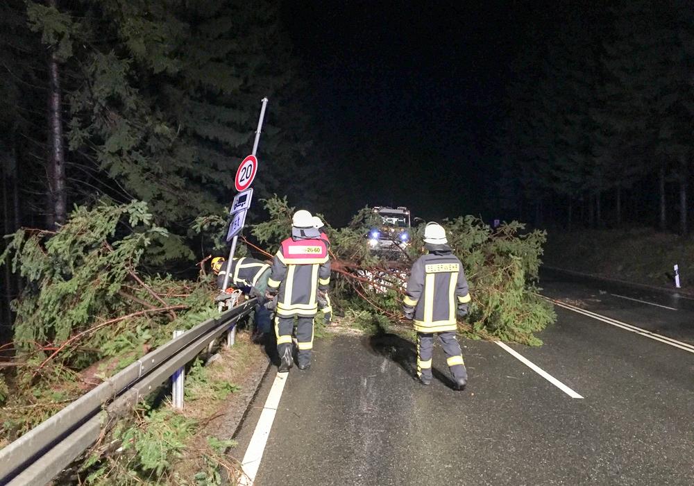Die Bad Harzburger Feuerwehr musste zu zwei Strumeinsätzen ausrücken. Foto: Feuerwehr Bad Harzburg