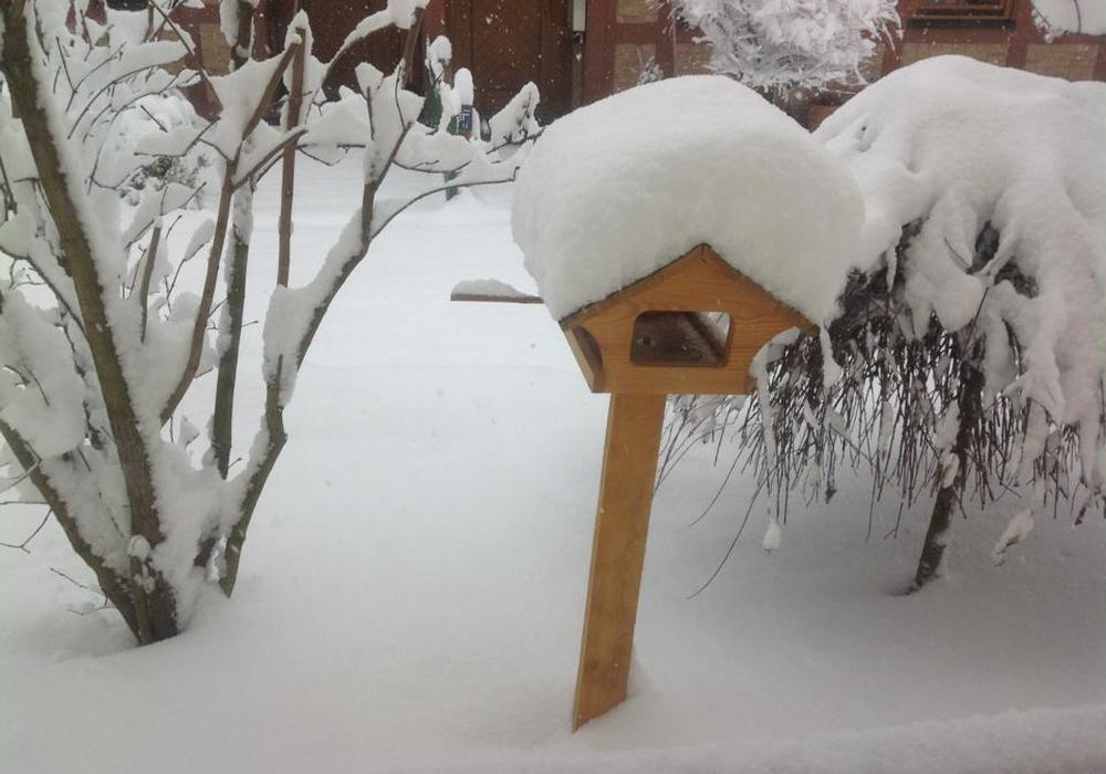 Schnee und Eis machen die Futtersuche für heimische Vögel schwierig. Wie man die Federtiere richtig füttert, weiß die NABU. Ein Futterhaus im Garten ist beispielsweise eine schöne Möglichkeit. Foto: Anke Donner