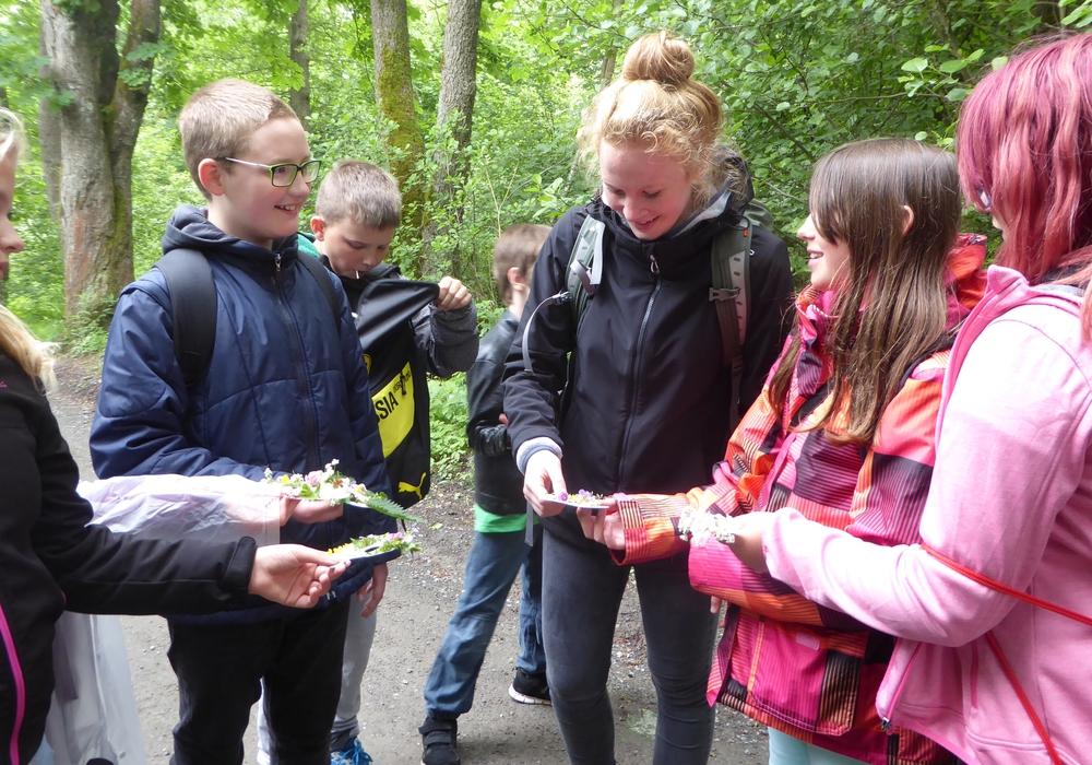 Henrike Wilmsen mit Schülern auf einer Kräuterwanderung am Natur-Erlebniszentrum HohneHof. Foto: Nationalpark Harz