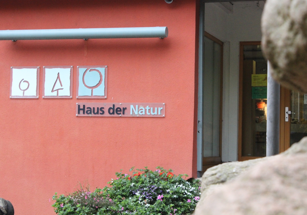 Symbolbild: Anke Donner