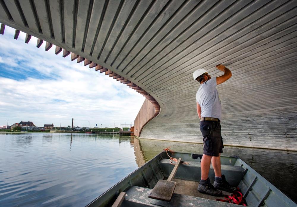 Am 13. und 14. Juni sind Naturwissenschaftler aus der ganzen Welt in Braunschweig. Foto: Raymond Rutting/NEXT architects.