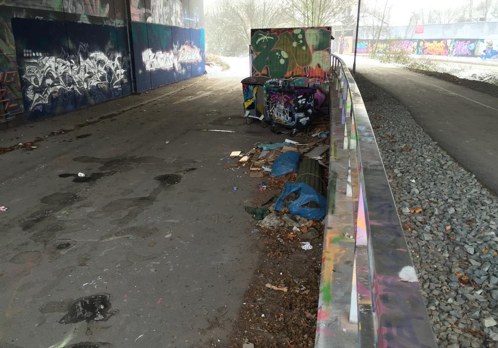 Müll sammelt sich an der Graffiti-Brücke. Foto: Robert Braumann