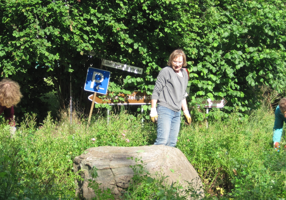 Rats-Frau Irene Mutke trat für die Pflege des Rosendreiecks in Evessen ein. Foto: Richert