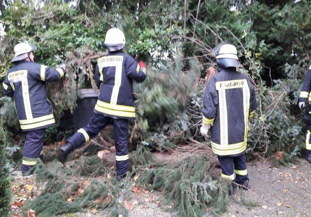 Am Langhansweg stürzte ein Baum um. Fotos: Feuerwehr Wolfenbüttel