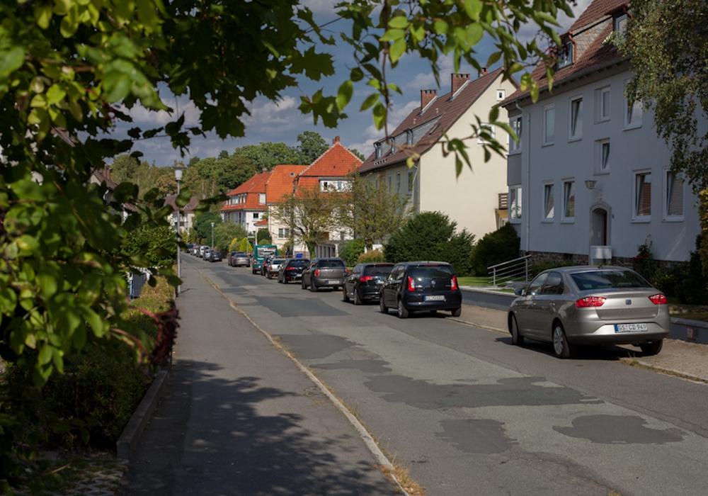 Die Dr.-Nieper-Straße. Foto: Alec Pein