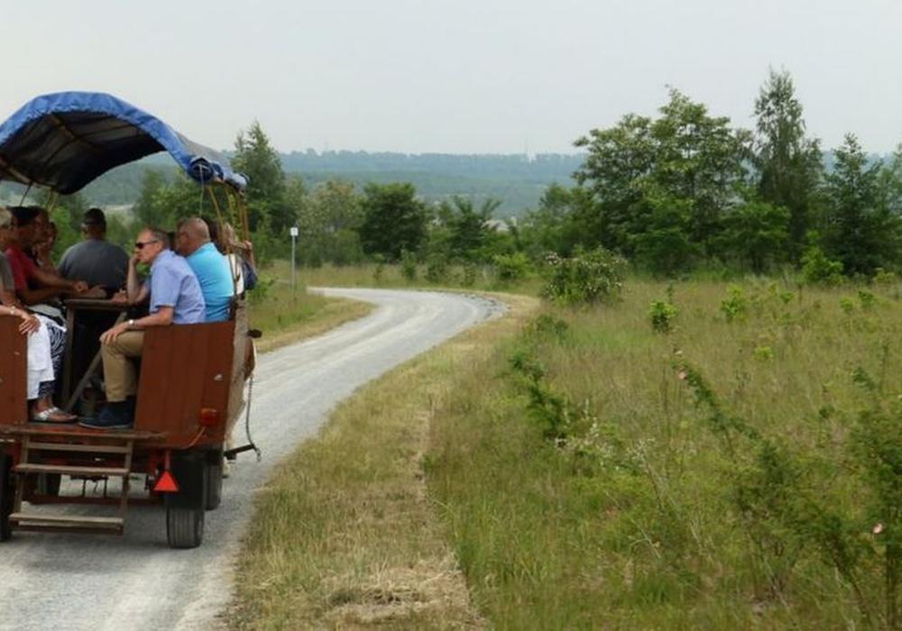 Mit der Kutsche an den Lappwaldsee. Foto: Stadt Helmstedt