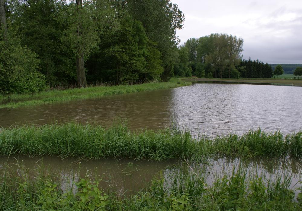 Überflutete und durchnässte Felder machen den Landwirten in der Region große Probleme. Foto: Anke Donner