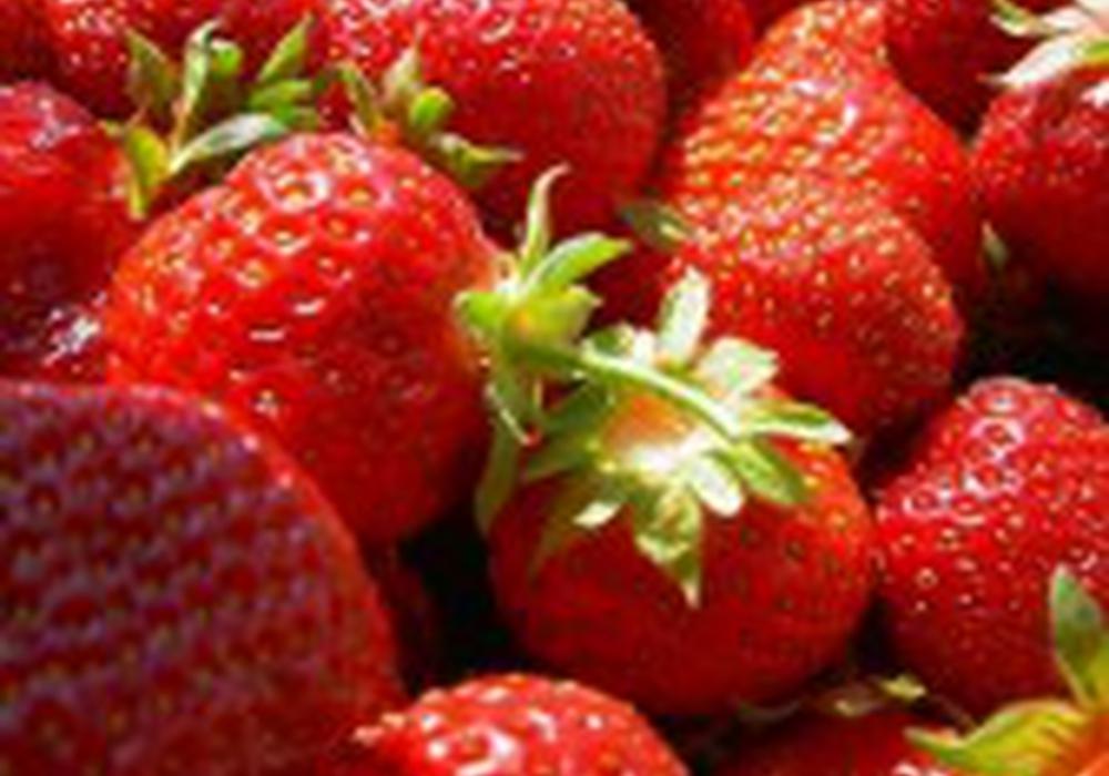 Trotz weniger Anbaufläche blieb die Erntemenge für Erdbeeren in diesem Jahr stabil.  Symbolbild: Archiv