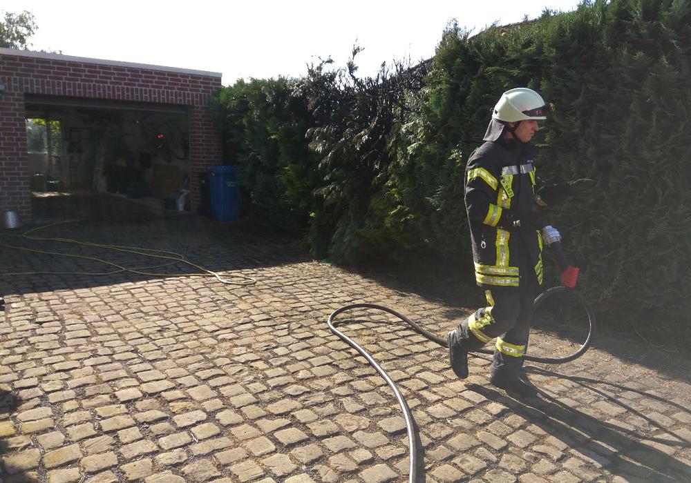 Ein Heckenbrand beschäftigte heute die Feuerwehren aus Meinersen, Ahnsen und Seershausen Foto: Carsten Schaffhauser, Kreisfeuerwehrpressestelle