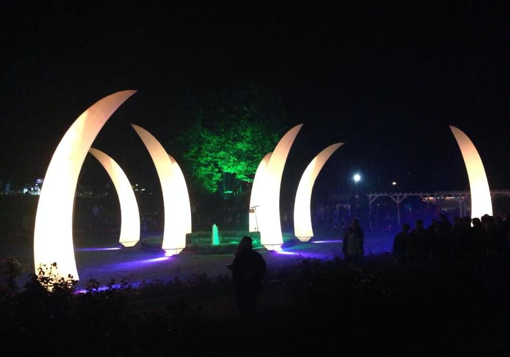 Auch in diesem Jahr war das Salz- und Lichterfest wieder gut besucht. Symbolfoto: Anke Donner