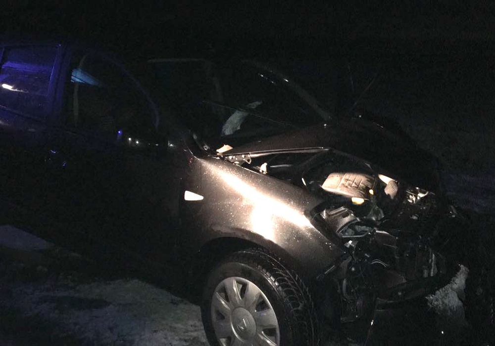 Der Dacia prallte zwischen Salzgitter und Broistedt gegen einen Baum. Fotos: Frederick Becker