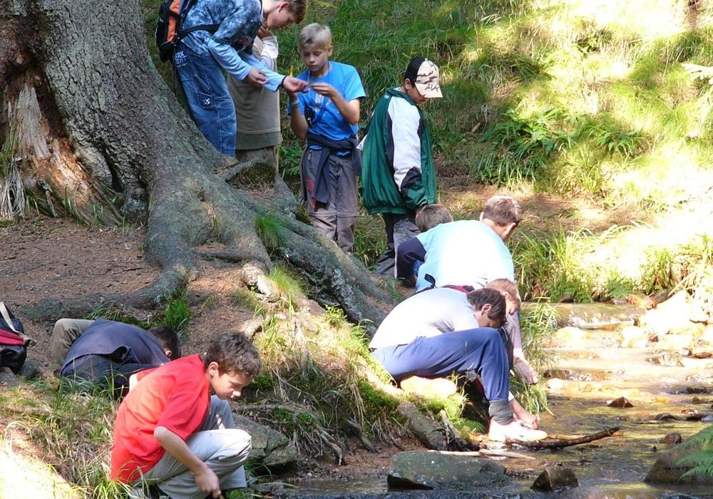 Gewässeruntersuchung mit Jugendlichen im Nationalpark Harz – eine Umweltbildungsaktivität mit Commerzbank-Umweltpraktikanten, Foto Nationalpark Harz