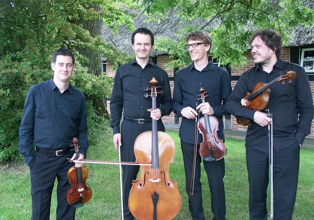 Catasia-Quartett, Foto: Privat