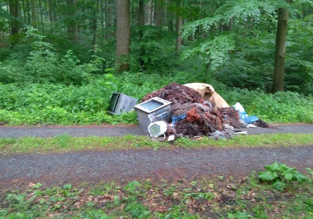 Unbekannte haben ihren Müll im Wald abgeladen. Foto: Polizeikommissariat Bad Harzburg