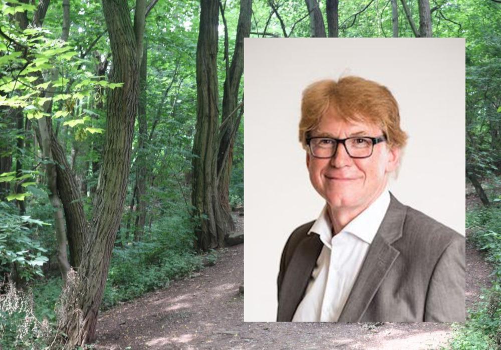 Dr. Rainer Mühlnickel, Vorsitzender des Grünflächenausschusses. Foto: Bündnis 90/Die Grünen Symbolfoto Wald: Robert Braumann