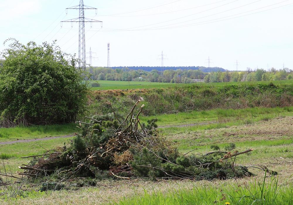 Jetzt wird wieder Holz für die Osterfeuer gesammelt. Symbolfoto: Archiv/Thorsten Raedlein
