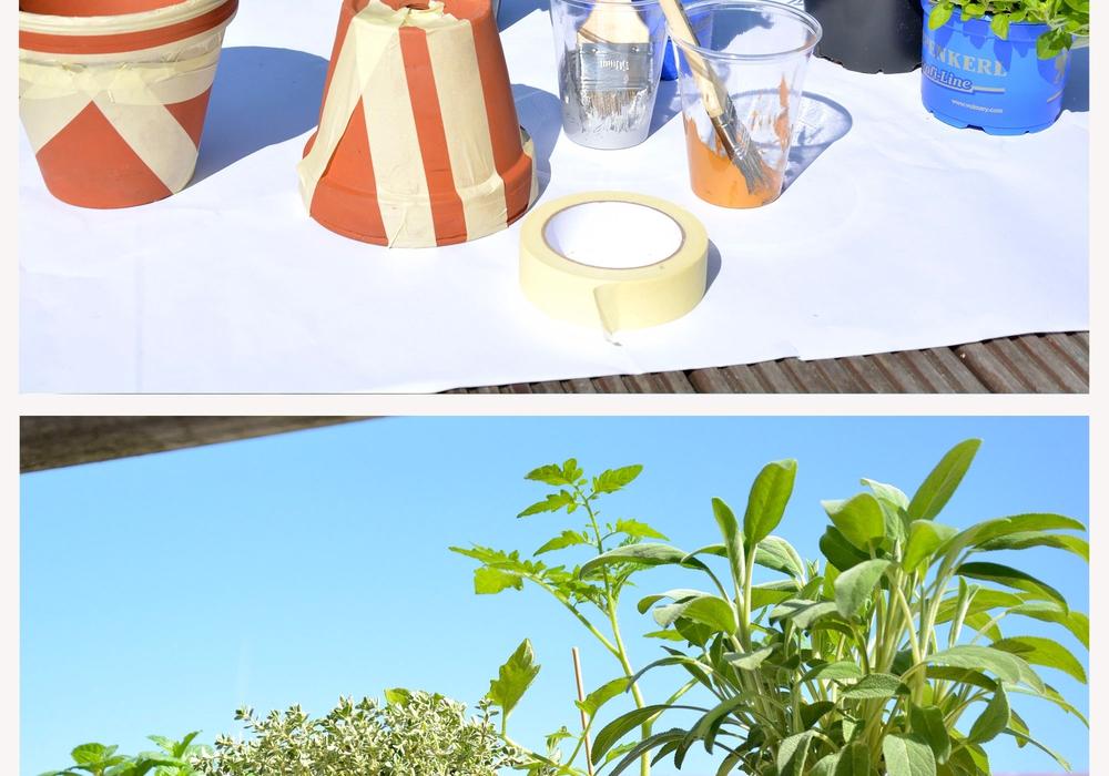 Anmeldung zum BBG-Balkonwettbewerb ist noch bis zum 20. Juli möglich. Ein Beispiel kreativer Balkongestaltung: Mit Acrylfarbe und Kreppband können Bastelbegeisterte aus Tontöpfen farbenfrohe Hingucker zaubern. Foto: Braunschweig Stadtmarketing GmbH