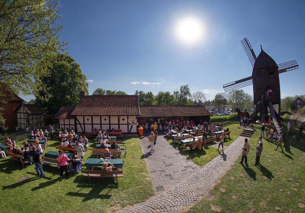 Die Bockwindmühle steht beim Deutschen Mühlentag im Mittelpunkt. Foto: Stadt Salzgitter/Andre Kugellis