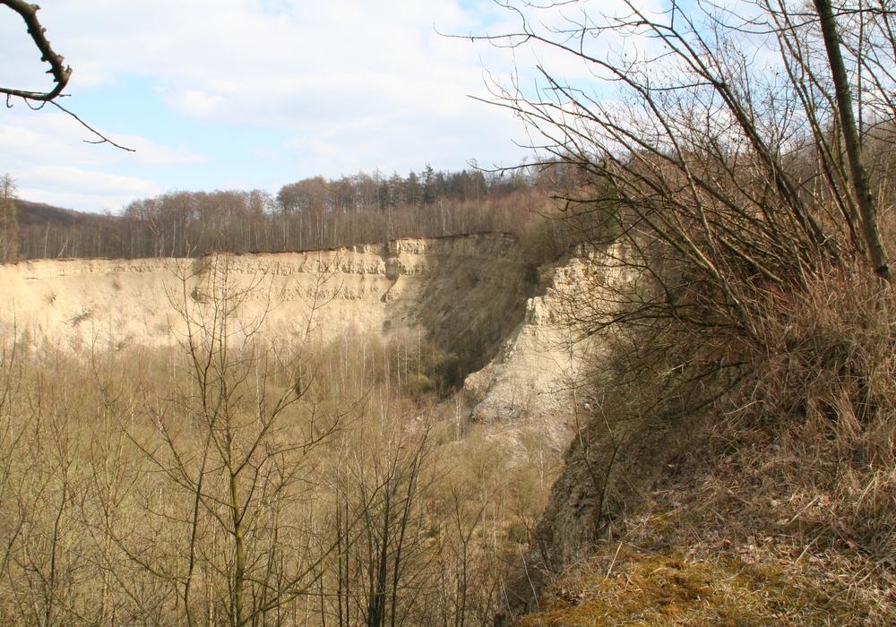 Blick in den Steinbruch bei Destedt. Foto: Diethelm Krause-Hotopp