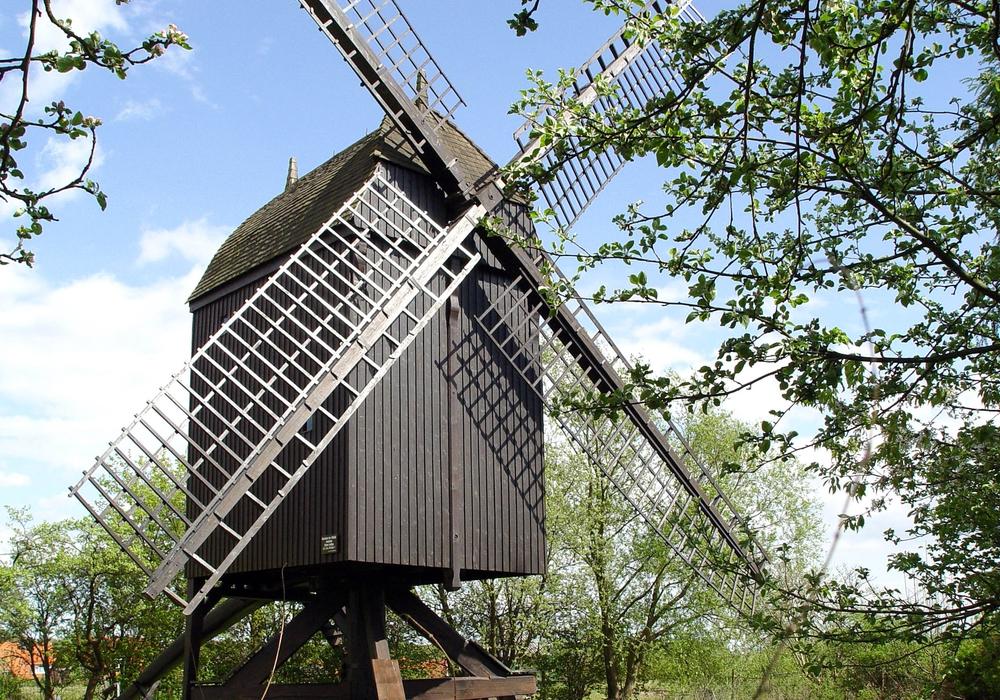 Die Schradersche Mühle präsentiert sich am Pfingstmontag. Foto: Stadt Wolfsburg