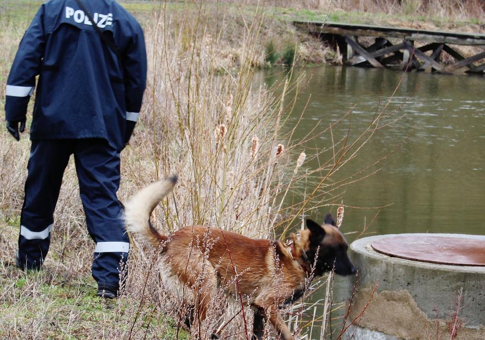 Auch mit Personenspürhunden wurde nach der Frau bereits gesucht. (Symbolbild).