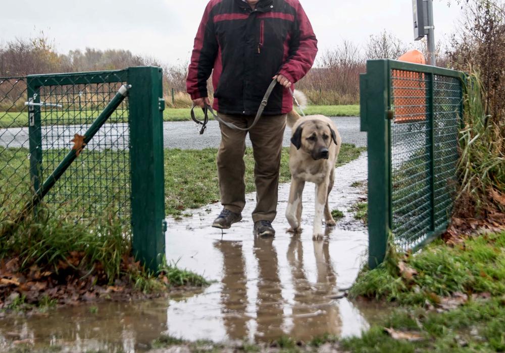 Gerade am Eingangsbereich sammelt sich das Wasser vom Weg auf der tieferliegenden Hundewiese. Fotos: Rudolf Karliczek