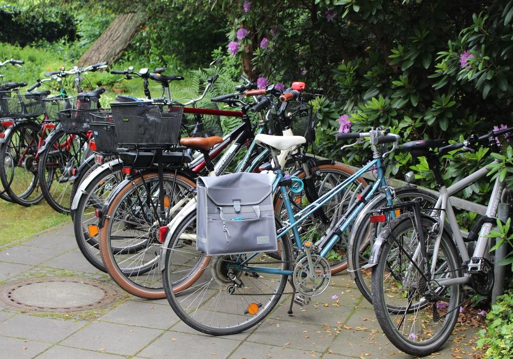 Radtour von Helmstedt nach Wolfenbüttel. Symbolfoto: Max Förster