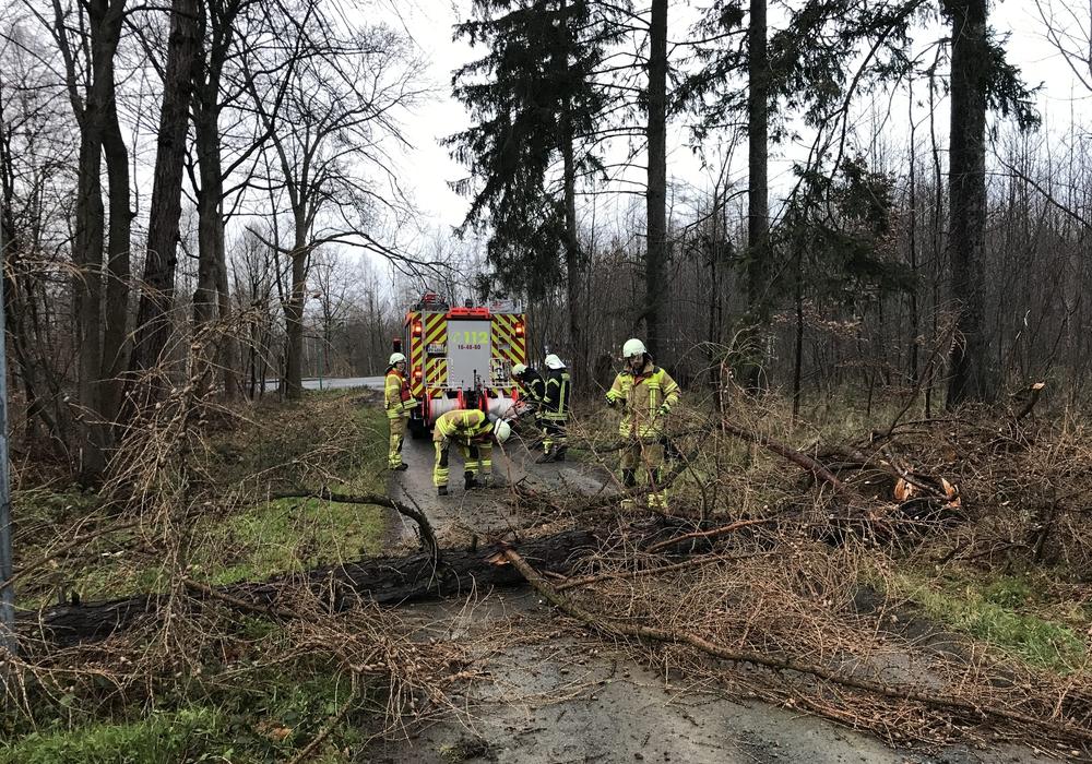 Fotos: Feuerwehr Stadt Bad Harzburg