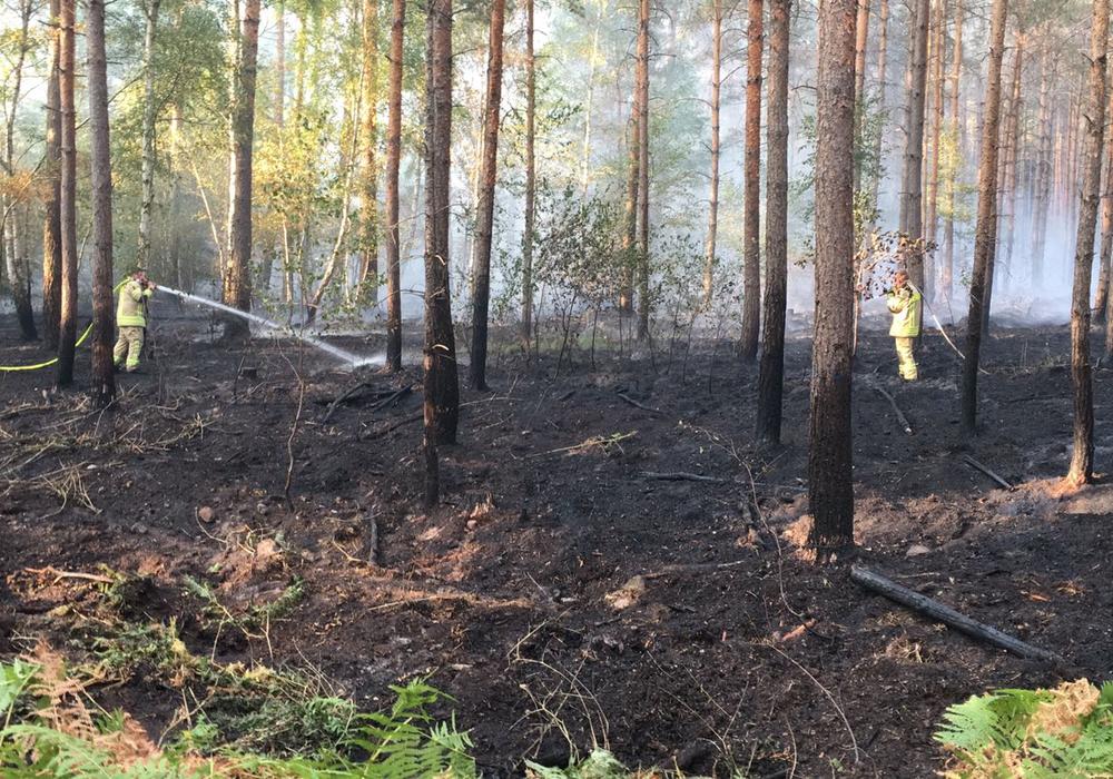 Das Feuer bei Mariental war am Dienstagnachmittag ausgebrochen. Foto: aktuell24/Bm