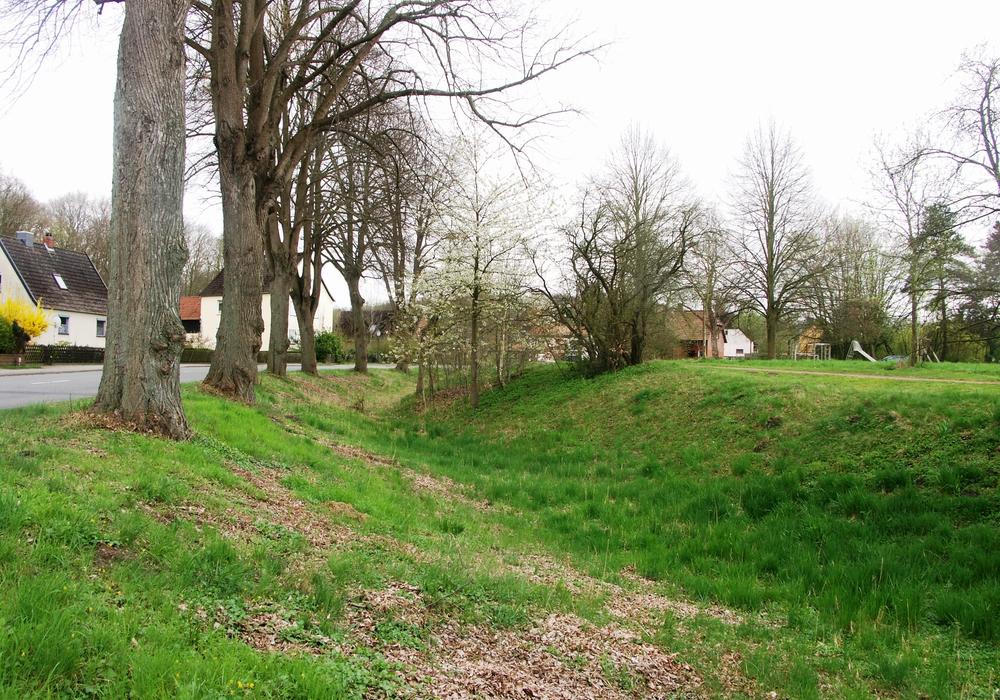 Der mächtige Ringgraben des Hasslerhofes. Fotos: T. Budde