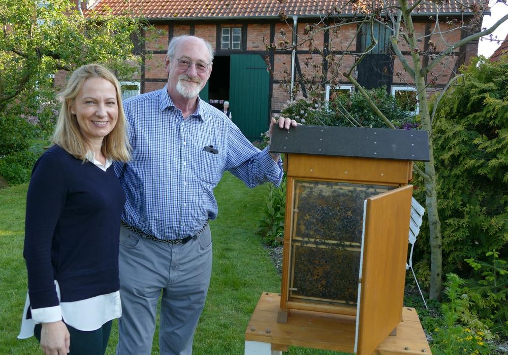 """Der """"gläserne"""" Bienenkasten von Herrn Künne verschaffte den Besuchern einen Einblick in die Bienenwelt. Foto: CDU-Ortsverband Cremlingen"""