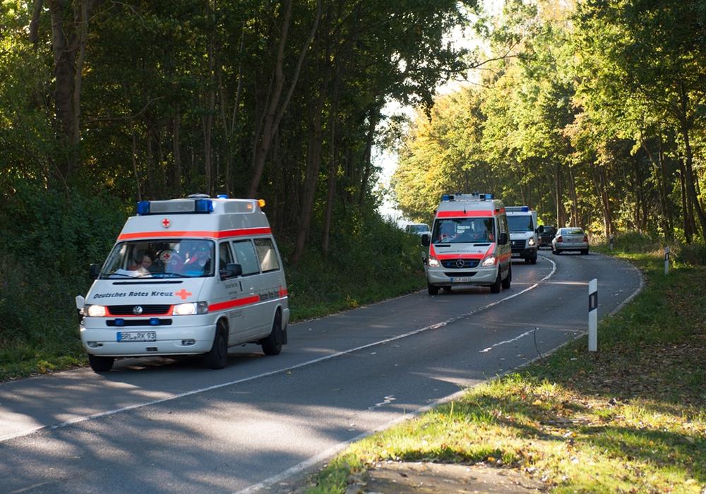 Organisiert und geleitet wurde die Übung von drei Helfern der DRK Bereitschaft Goslar. Foto: M. Pape