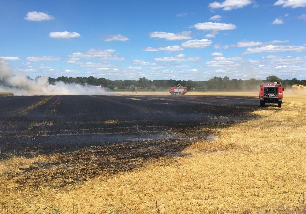 In den letzten Wochen hat es schon mehrmals Flächenbrände gegeben. Symbolfoto: aktuell24(bm)