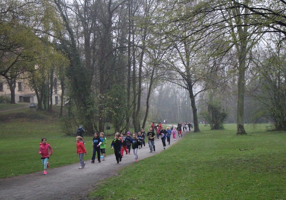 Am Pfingstsonntag findet der Bergmarathon statt. Symbolfoto: Jan Borner