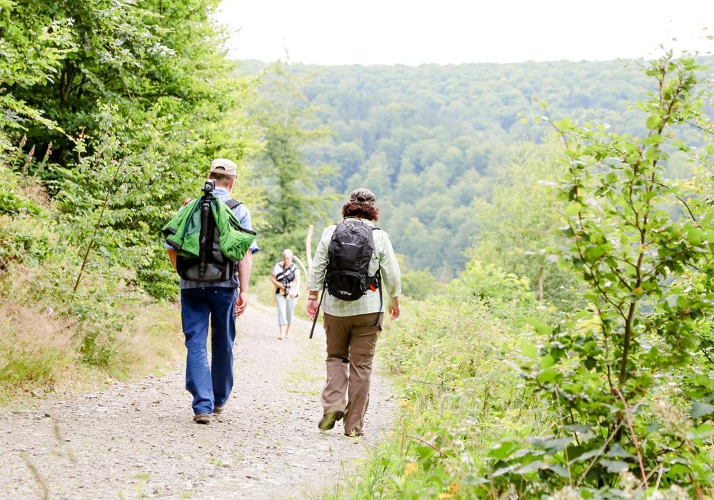 Ob Quellenwanderung, Afterwork oder Themen-Tour - Bad Harzburg bietet viele Wander-Möglichkeiten an. Foto: Kur- Tourismus- und Wirtschaftsbetriebe der Stadt Bad Harzburg