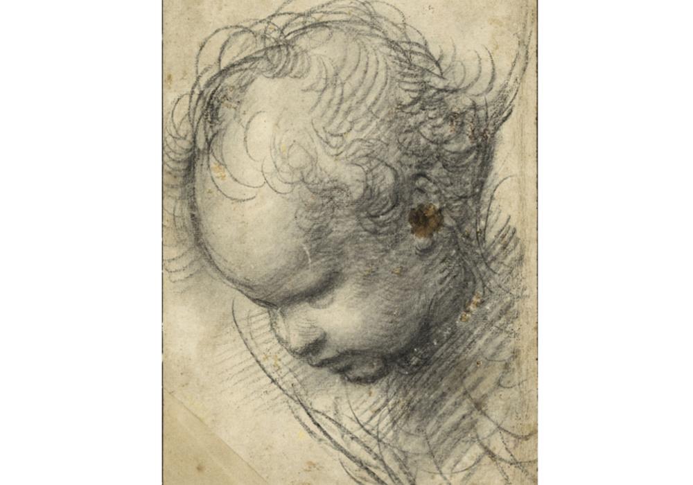 Bild: Raffael, Kopf eines Cherubs, um 1509/11, schwarze Kreide, Hamburger Kunsthalle, Kupferstichkabinett. Foto: Cordes – Herzog Anton Ulrich-Museum