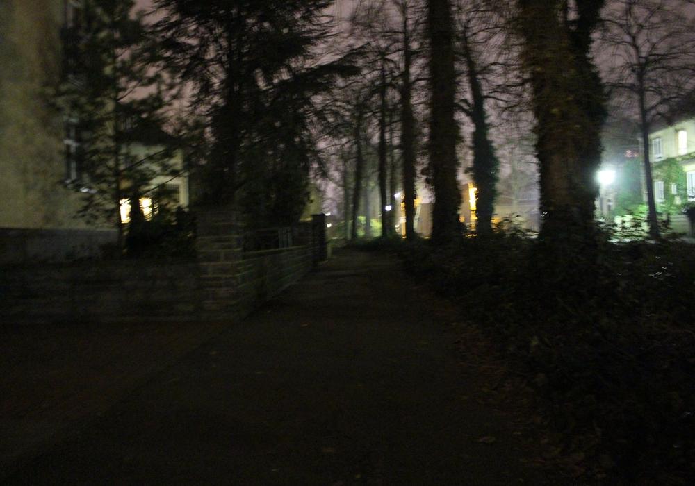 Der Herzbergweg ist im Winter oft schlecht beleuchtet Foto: Frederick Becker