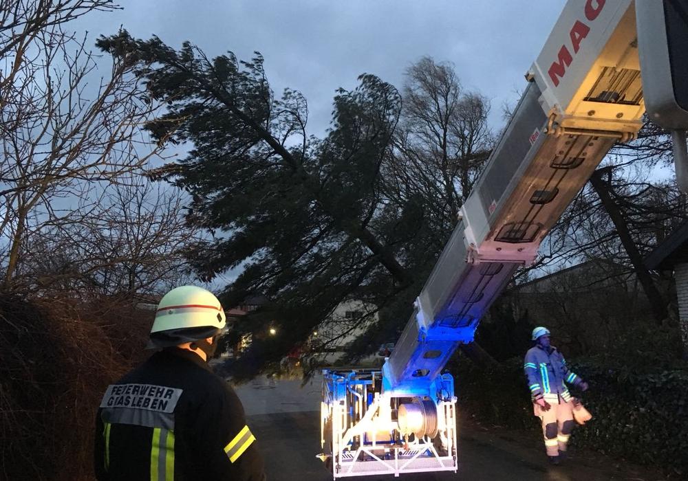 Hier ein Baumeinsatz in Grasleben. Fotos: Feuerwehr Helmstedt