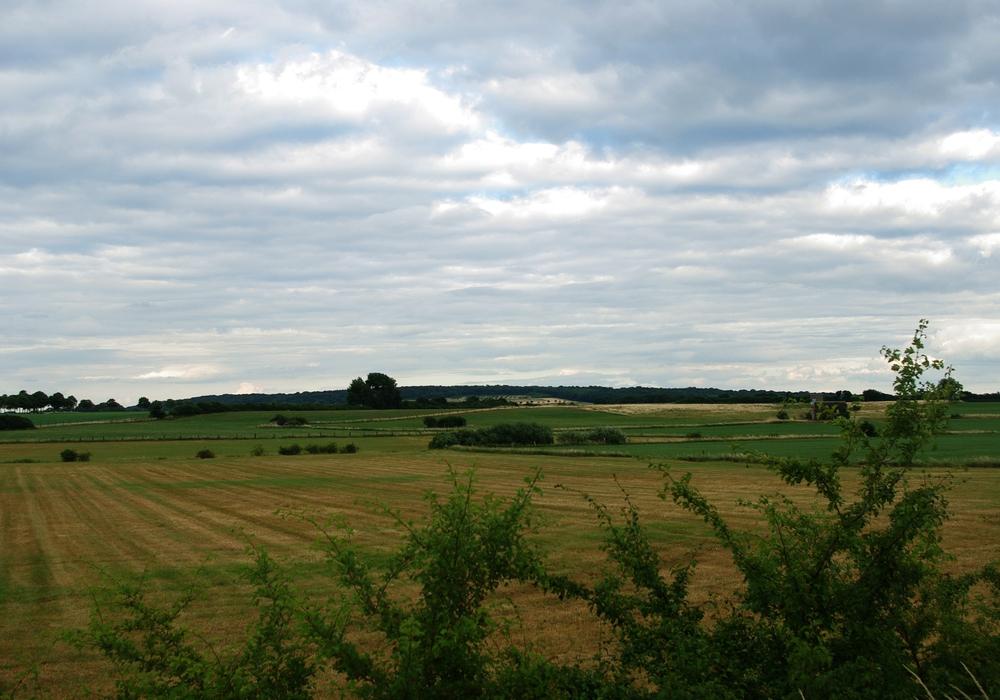 Foto: Ch. Rothe-Auschra Landschaft in Schandelah-Wohld