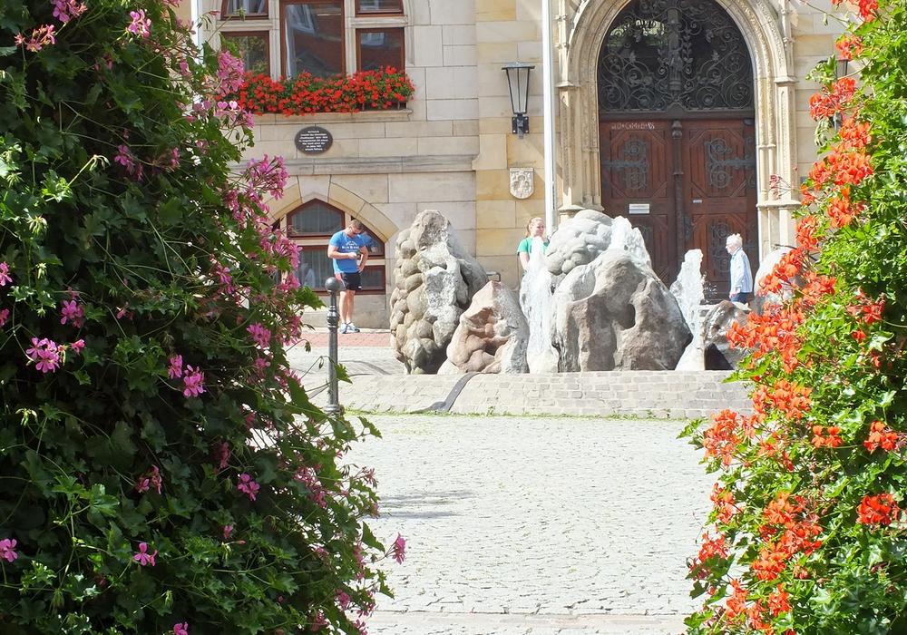 Blumenpracht vor dem Rathaus. Fotos: Achim Klaffehn