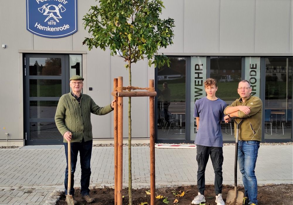 Der Amberbaum wurde vor das neue Feuerwehrhaus gepflanzt.