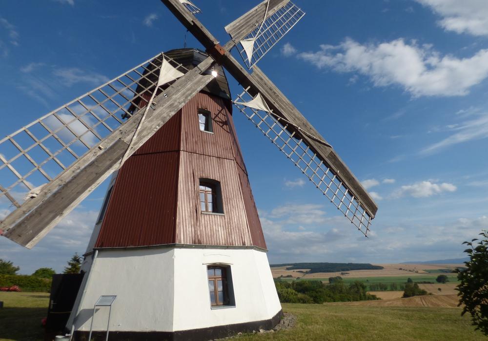 Eins der 13 Motive im Lions-Kalender 2021 ist die Windmühle in Hedeper.