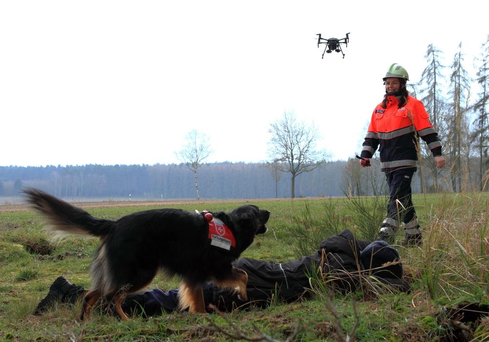 Um Leben zu retten, müssen auch die Hunde der Malteser ausgebildet werden. Symbolbild